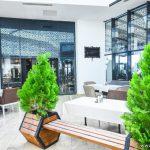 Mamamia Cafe Batumi 021 INFOBATUMI 150x150
