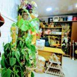art flora flower batumi 13 150x150
