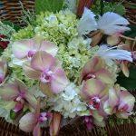 art flora flower batumi 21 150x150