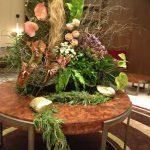 art flora flower batumi 23 150x150
