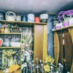 art flora flower batumi 9 150x150