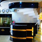hotel golden fish 2016 4 INFOBATUMI 150x150